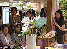 2008-4大丸梅田店